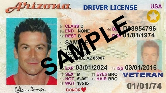 arizona drivers license sample